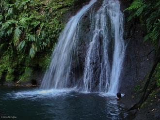 Cascade aux écrevisses à Basse-Terre, Guadeloupe