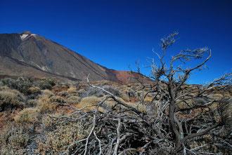 Paysage au volcan Teide à Tenerife Archipel des Canaries