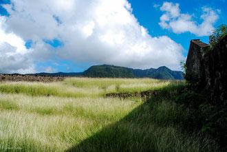 Guadeloupe, Basse-Terre, vue sur le massif de la Soufrière