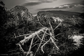 Gorges du Verdon, Alpes-de-Haute-Provence