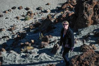 Jackotte au volcan Teide à Tenerife Archipel des Canaries