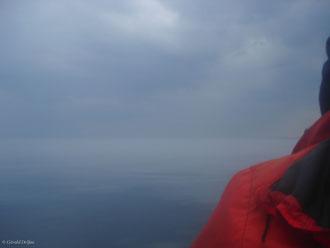 A la rencontre des baleine dans la brume du Saint-Laurent au Québec