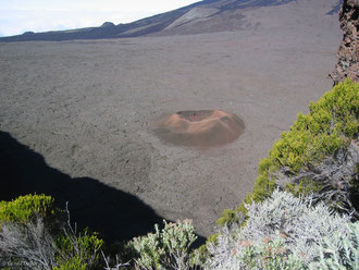 Bouche du Formica Léo de l'enclos du Piton de la Fournaise, Ile de la Réunion