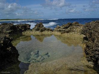 Bassin sur le littoral de la pointe des Châteaux à Grande-Terre, Guadeloupe