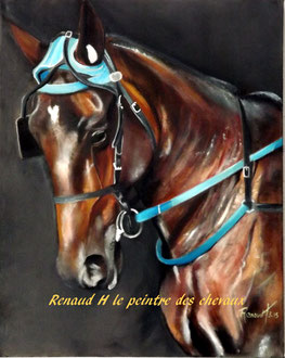 renaud-hadef-artiste-equin-TIMOKO-huile sur toile 60x60cm