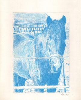 Ohne Titel, 2015, Pastellstift auf Papier, 32 x 24 cm