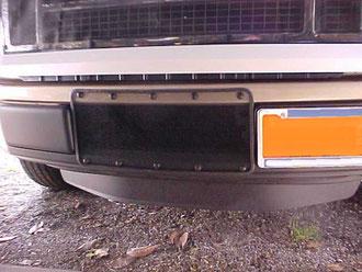 2012 F150 Ecoboost Bumper Bug screen