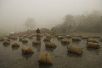 Reissäcke vor einer Reismühle / Reis - Bangladesh
