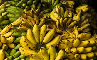 Bananen auf einem Markt in Tansania / Bananen - Uganda