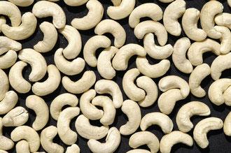 Sortierung nach Größe und Qualität - der Preis hängt davon ab.. / Cashew -Tansania