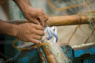 Kleinfischer vermarkten direkt nach dem Fang vom Boot / Fisch - Philippinen