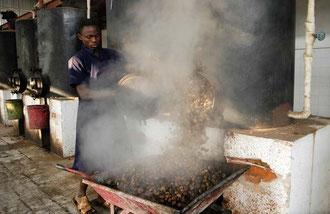 Nach dem Erhitzen werden die Cashew - Nüsse zum knacken in die große Halle gebracht / Cashew -Tansania