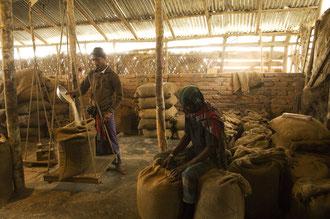 Arbeiter in der Reismühle / Reis - Bangladesh