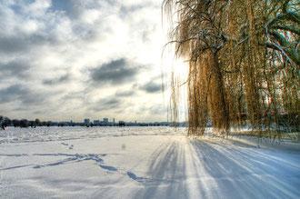 ein Wintermärchen auf der Alster