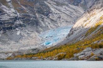 Blick über den Nigardsbrevatnet zum Gletscher