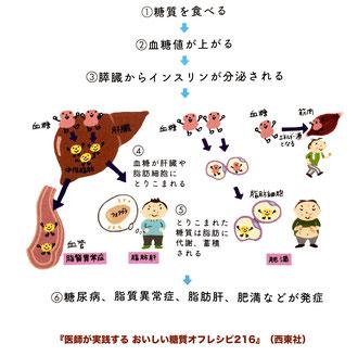 医師が実践するおいしい糖質オフレシピ216/西東社