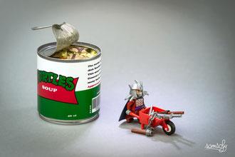 Turtles Soup