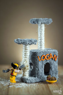 Logan's Home