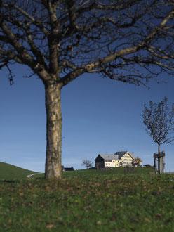 Bauernhaus Im Gupf, Stein: Aus der Weite