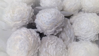 Roses en papier crépon décoration mariage création atelier de fleurs en papier