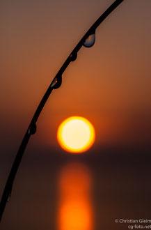 Zweite Station auf der Anreise am Strand des Lago di Bolsena kurz nach Sonnenaufgang