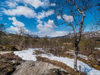 Norwegen, oberhalb Øvre Eidfjord, am Rand der Hardangervidda, 28.05.2017
