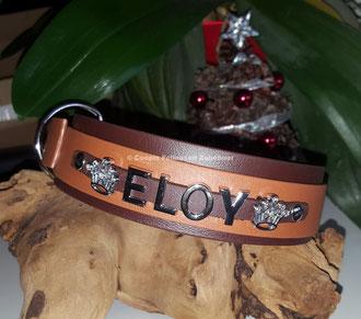 Biothane Halsband mit Namen