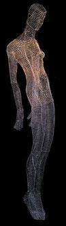 Pinchgut. 2004. Wire mesh. 200 x 45 x 45cm. © Charles Rocco