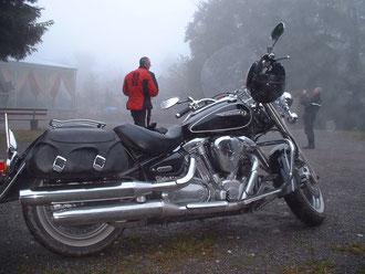 XY 1600 Wild Star
