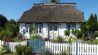 Schöne Häuser auf dem Darß...