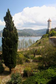 Ile d'Elbe en famille et fourgon aménagé : la douceur de vivre Toscane (Italie) 10