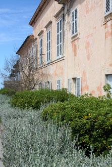 Ile d'Elbe en famille et fourgon aménagé : la douceur de vivre Toscane (Italie) 9