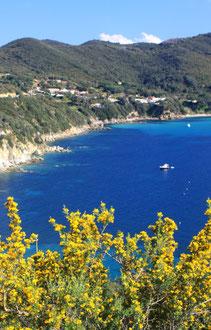 Ile d'Elbe en famille et fourgon aménagé : la douceur de vivre Toscane (Italie) 60