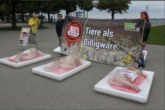Protestaktion des Vereins gegen Tierfabriken im Juli 2014 in Bregenz