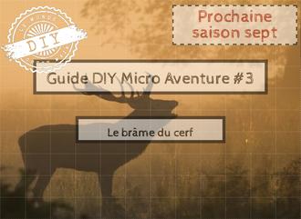 Guide-Micro aventure-IDF-brume du cerf