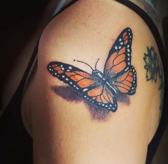 papillon couleur
