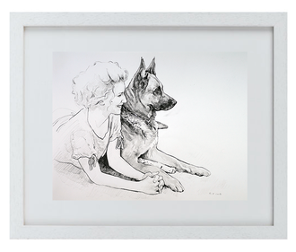 """Prima DIVA Zeichnung von """"Harry"""" einem Schäferhund"""