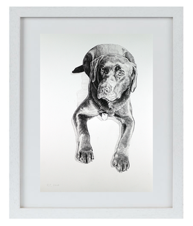 """Prima DIVA Zeichnung von """"Woody"""" einem Labrador"""