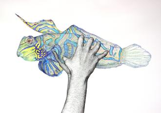 Hände und Fisch, 2006. (Gouache / Tuschestift / Papier, 50 x 65 cm) (Privatbesitz)