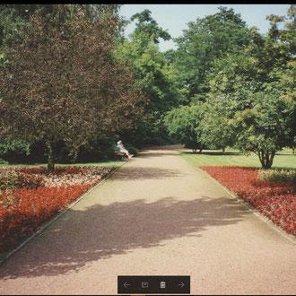 1978, Parksituation im Frühjahr mit Wechselbepflanzung und gepflegten Wegen, Quelle: mit fdl. Genehmigung von Herrn Stratenwerth