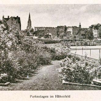 30-er Jahre, Blick in südwestlicher Richtung über den Parkinnenraum mit Einzelbaumbepflanzung; Quelle: mit frdl. Genehmigung von Herrn Stratenwerth