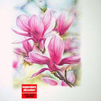 Blumen zeichnen, Blumen Illustrieren,  Zeichnen der Blumen, Illustration der Blumen