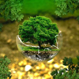 Umwelt- und Tierschutz