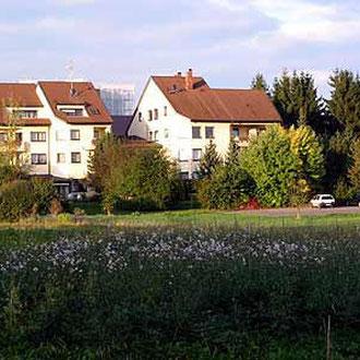 Die Umgebung Der Ferienwohnung Auwiesen Appartment In Bad
