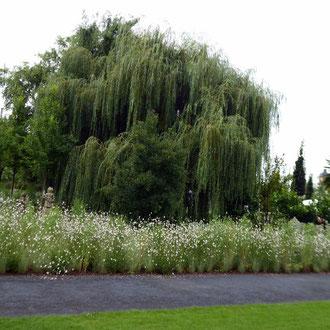 Schlösser + Gärten