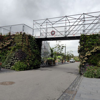Grüne Brücke
