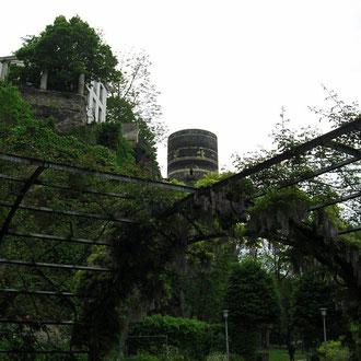 im Park von Angers