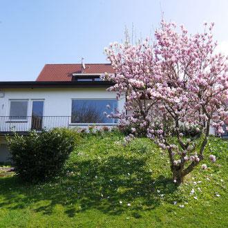 Große Gartenwohnung, Friedrichshafen