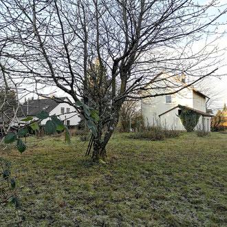 Auf diesem Baugrundstück entstehen sechs Doppelhaushälften, Meckenbeuren