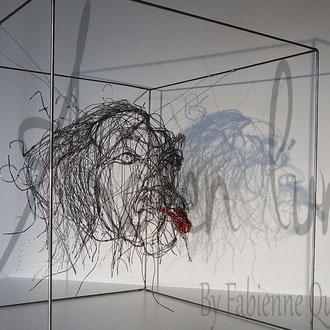 ARC EN LUNE Fabienne Quenard Einstein de Arc en Lune dans cube fil de fer 3D 50x50cm